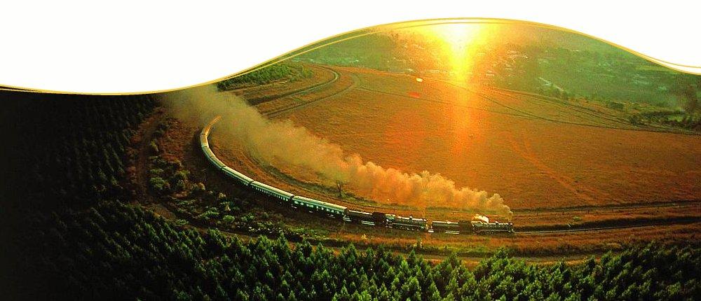 Im Luxuszug Rovos Rail durch Südafrika