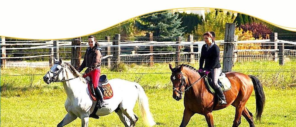 Reiterferien weltweit mit Pegasus Reiterreisen