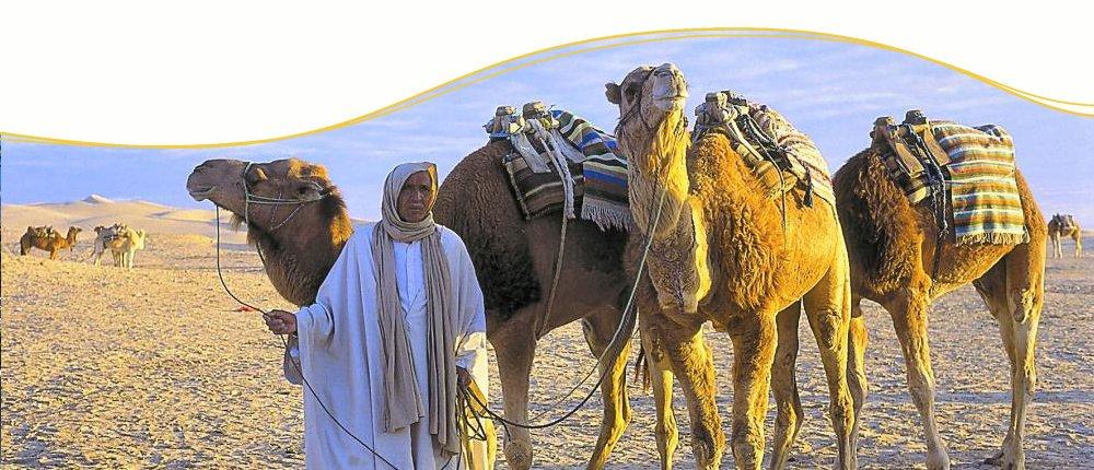 Live Event mit Beduinen, Marokko