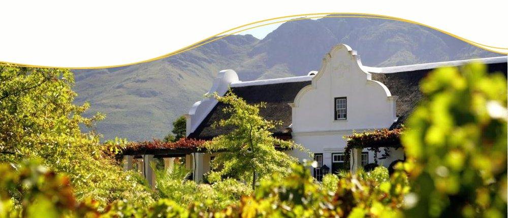 Weinregion in Südafrika