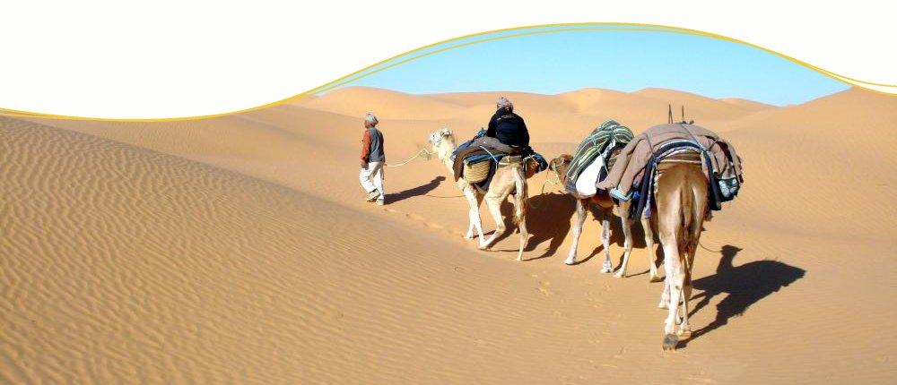 Kameltrekking, Tunesien