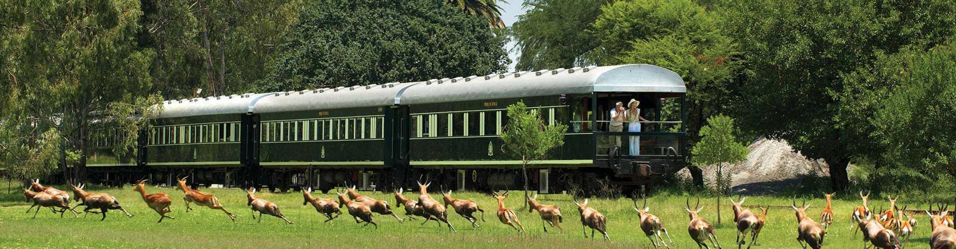 ROVOS RAIL, Safari auf Schienen in Südafrika