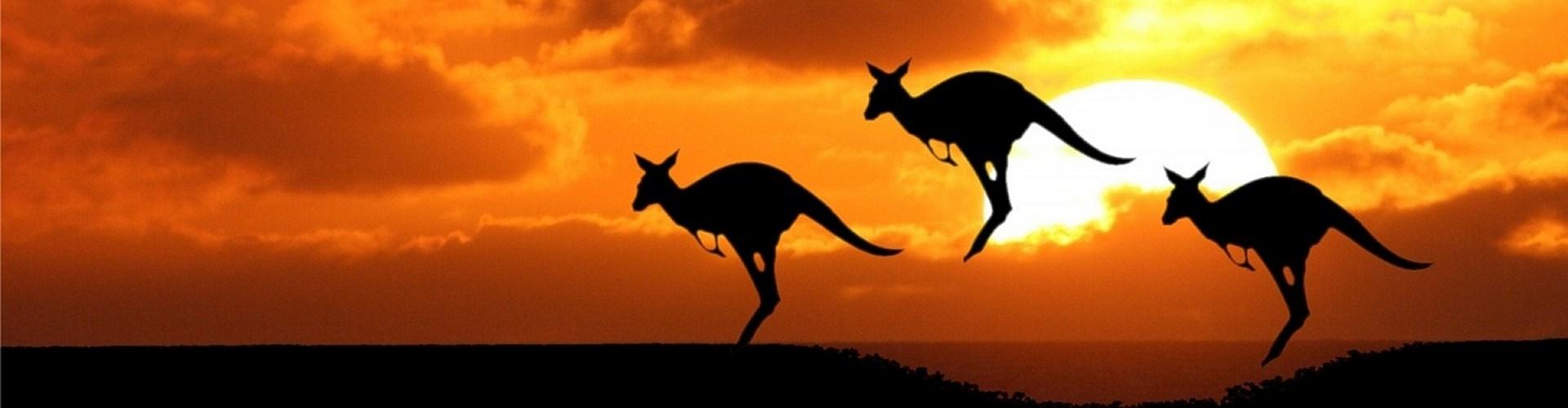 Reisetipp Australien erfahren