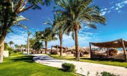 TUI SUNEO Soma Beach  (Hurghada & Safaga)