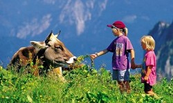 Zu Fuß die Schweiz entdecken