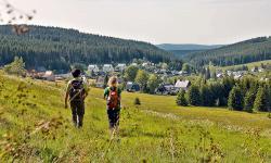 Urlaubshotels zum Wandern  (  (Erzgebirge))