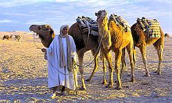 Marokko - Alle Rundreisen