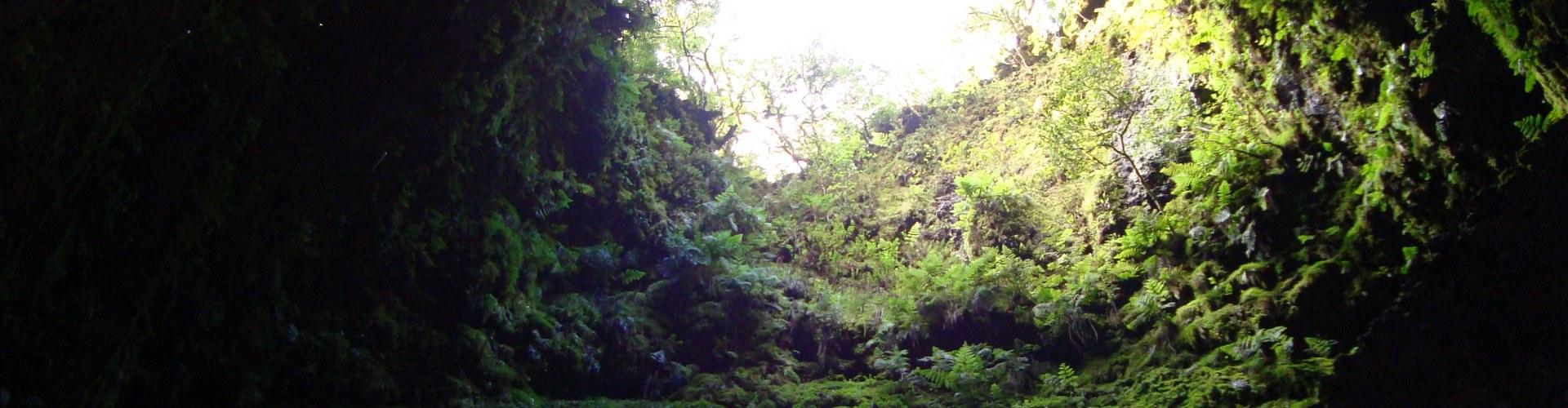 Azoren - Insel Terceira