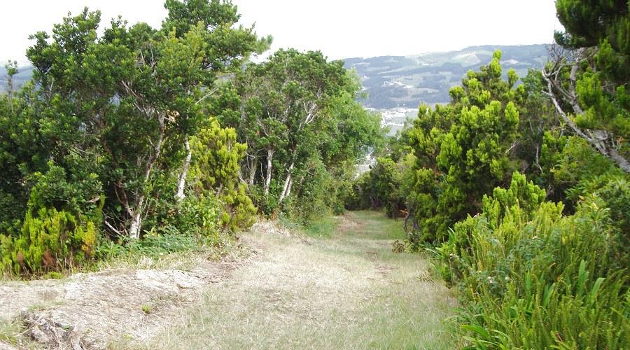 Wunderschön Azoren