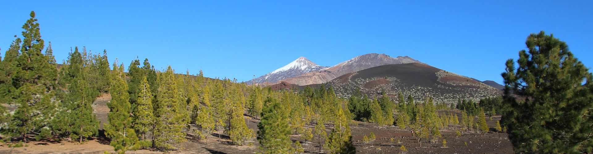 Reisetipps zum Thema: Pico del Teide
