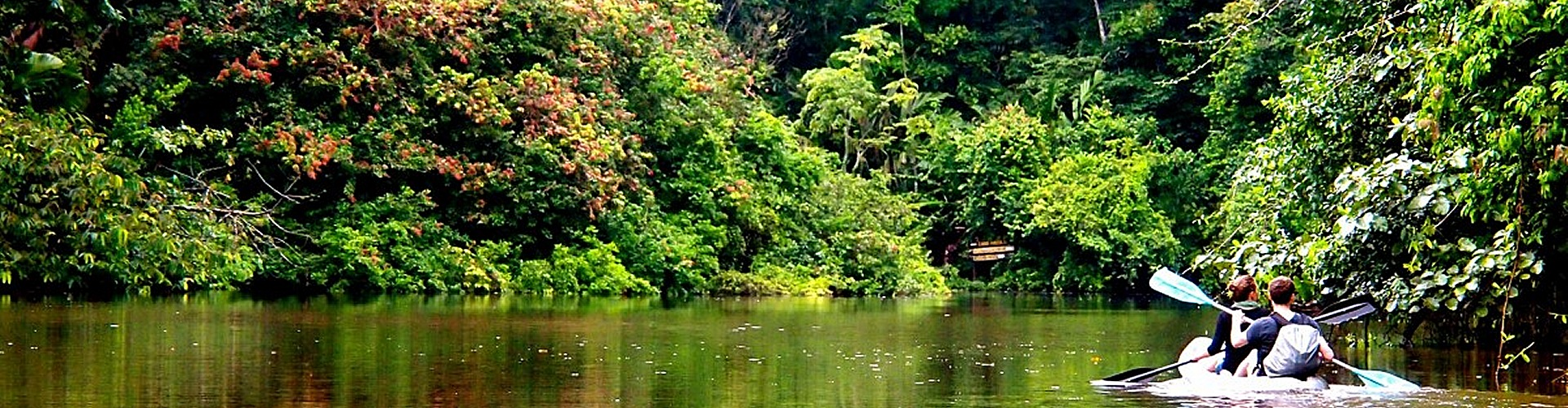 Das pure Leben entdecken im Tortuguero Nationalpark in Costa Rica